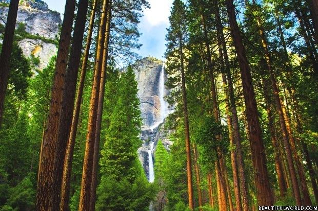 the-yosemite-falls